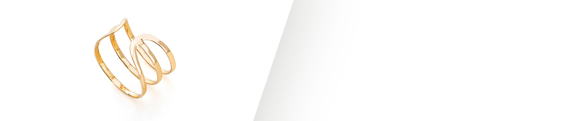 Banner Anel de Falange